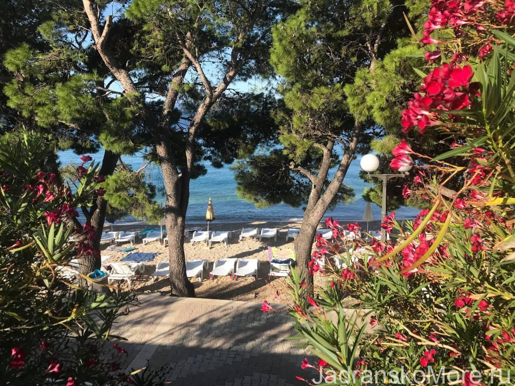 Пляж отеля Афродита