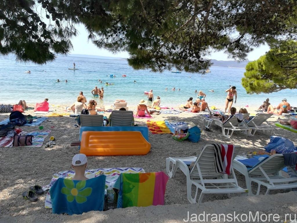 Пляж в Бреле под соснами